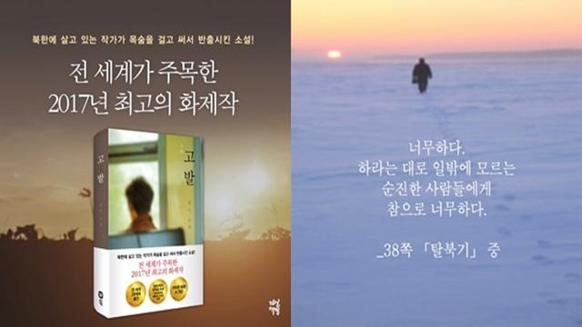 소설 고발, 북한소설가 반디
